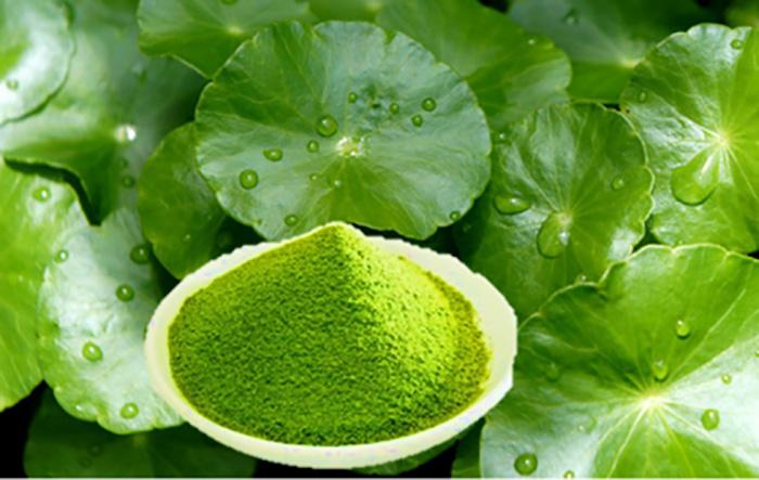 cách trị vết thâm mụn ở mặt bằng rau má trong 12 cách trị vết thâm mụn ở mặt tại nhà hiệu quả bằng phương pháp thiên nhiên