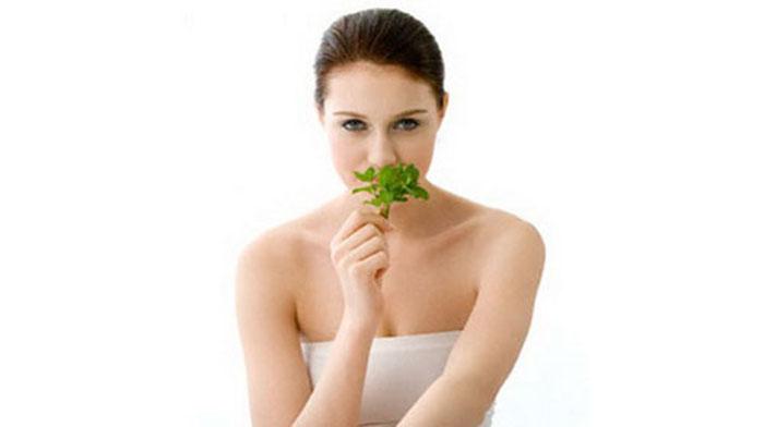 Lá bạc hà có khả năng trị sẹo rỗ lâu năm do mụn để lại hiệu quả